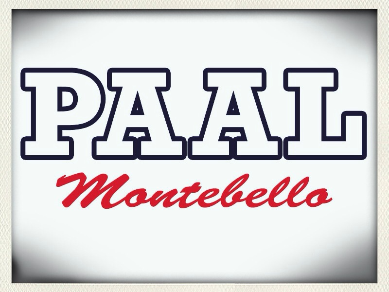PAAL Letter Logo 2